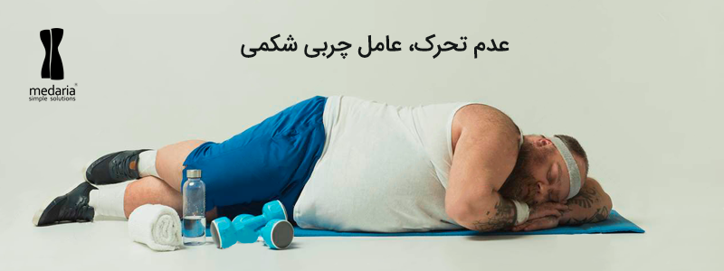 تاثیر بی تحرکی در چربی شکم
